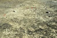 Újkokori cölöpszerkezetes építmény - 2. számú lelőhely