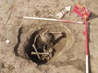 A képen egy ismeretlen korú temetkezés látható. A leletösszefüggések alapján egy szarmata gyermek vázcsontjairól lehet szó. Érdekesség, hogy egy cölöplyukban feküdt a váz - 31. számú lelőhely