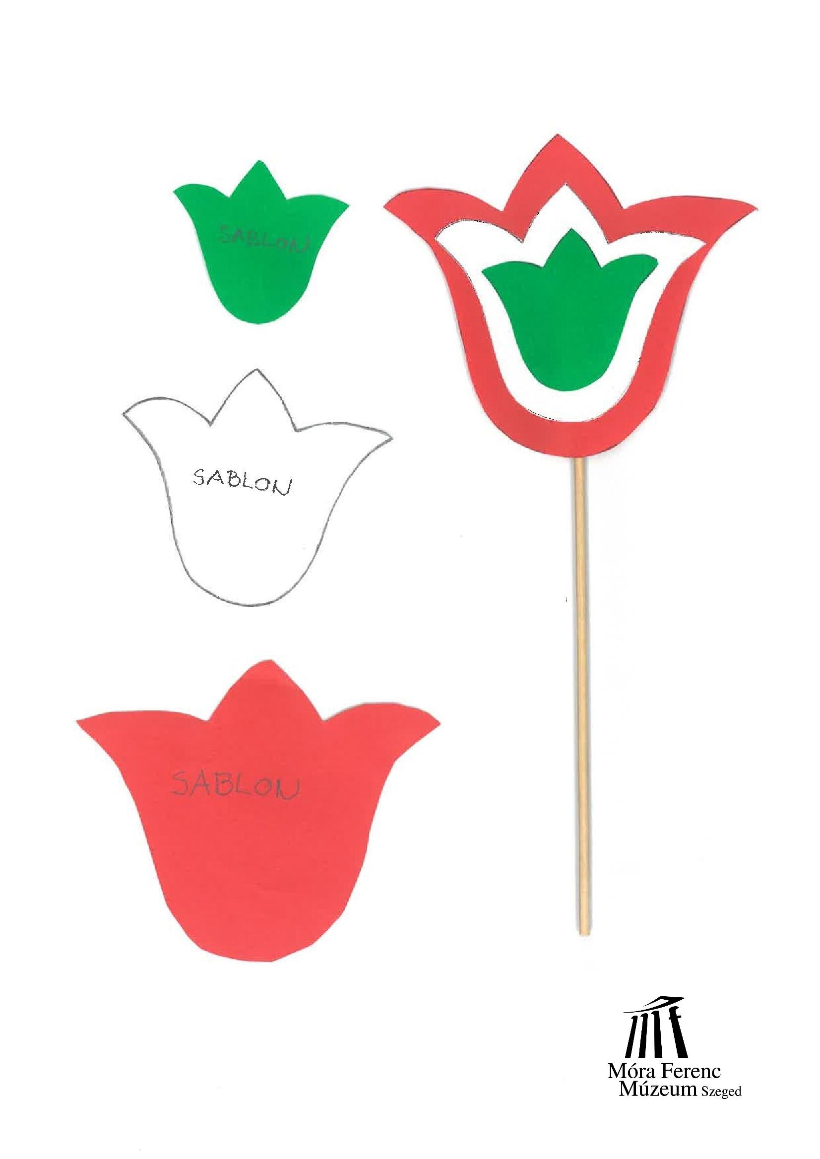 tulipán sablon